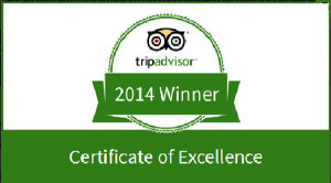 Certificate of excellence award 2014